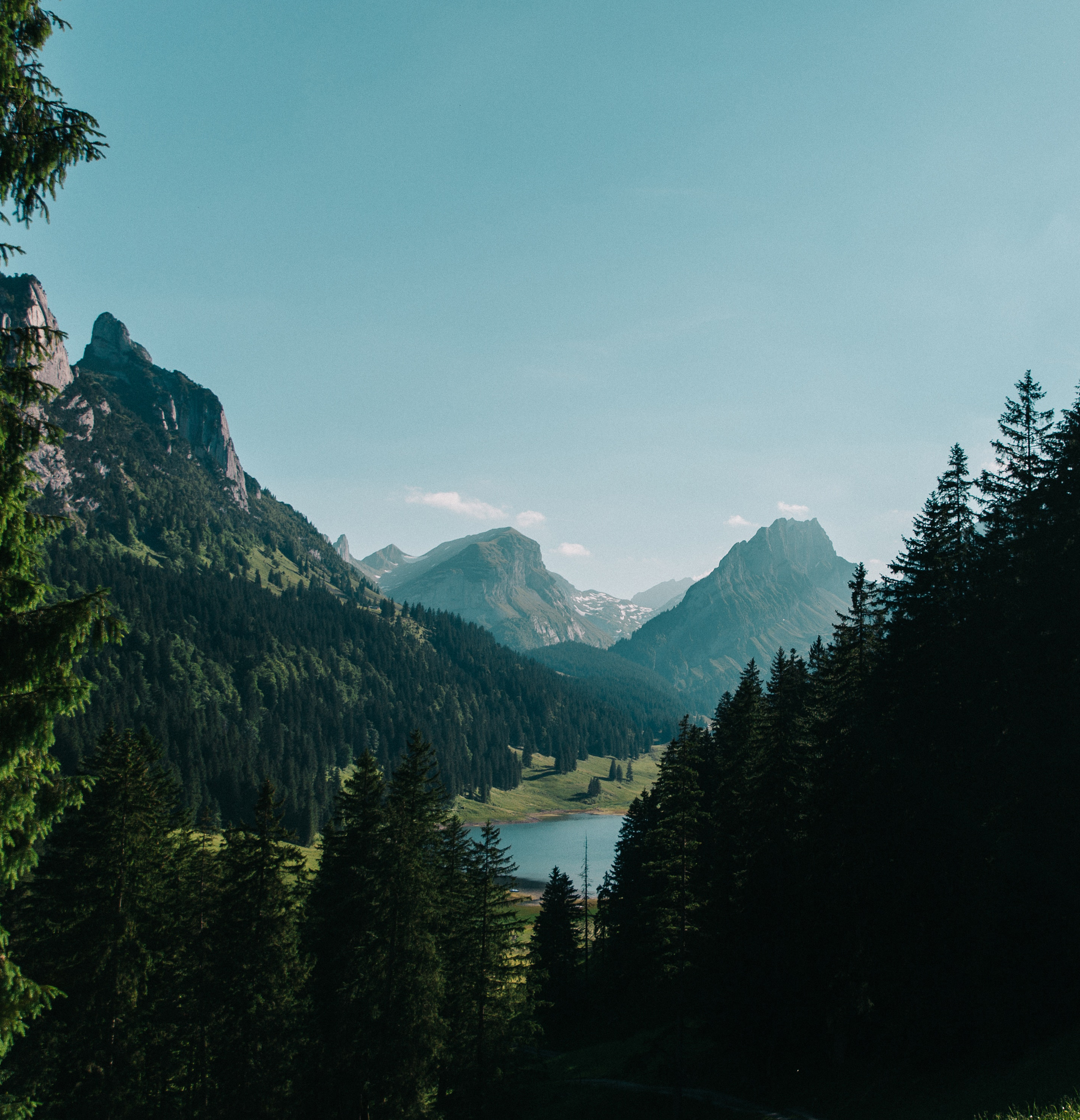 mountains coniferous trees and a lake