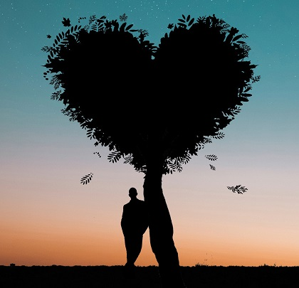silhouette of heart-shaped tree and person