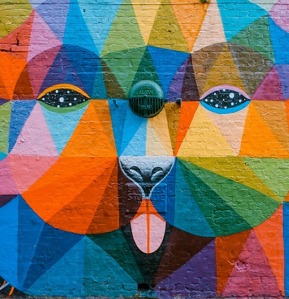 multicoloured dog head mural
