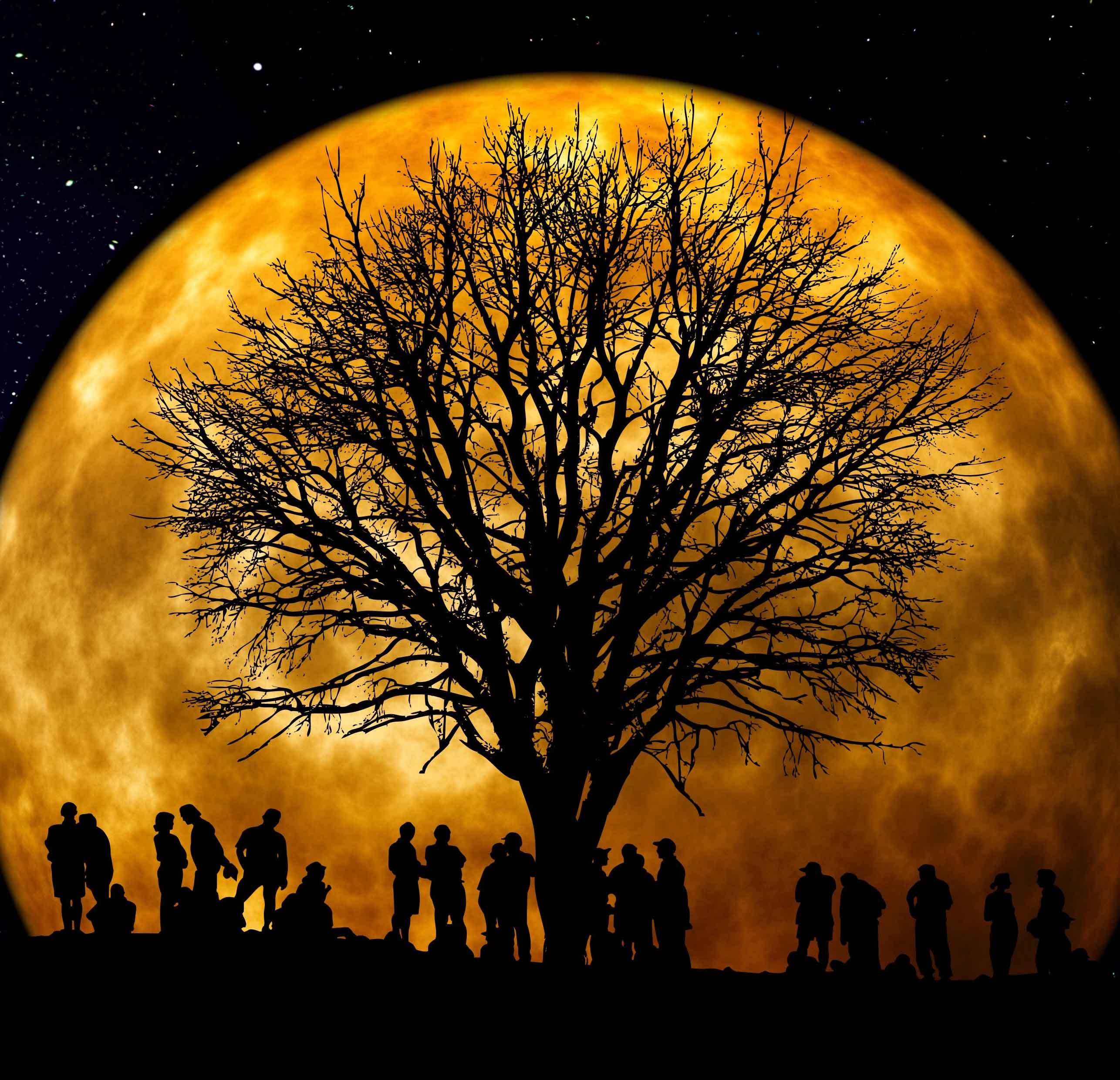 A group of people standing around a bare tree with the full moon behind