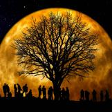 Image of a group of people and a tree silhouetted in front of the moon
